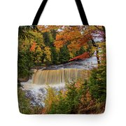 Upper Tahquamenon Autumn Colors -0007 Tote Bag