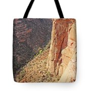 Valley Colorado National Monument 2884 Tote Bag