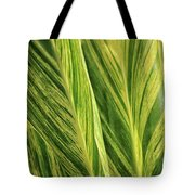 Variegated Shell Ginger Tote Bag