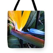 Vibrant Bird Of Paradise #2 Tote Bag