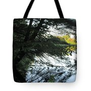 View Of The Lake Through The Branches Tote Bag