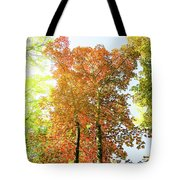 Vintage Autumn II Tote Bag by Anne Leven