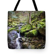 Vivid Green In The Black Forest Tote Bag