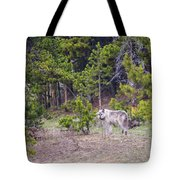 W755 Tote Bag by Joshua Able's Wildlife