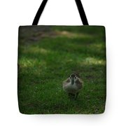 Waddling Ducklings Tote Bag