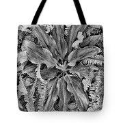 Waikiki Floral Study 5 Tote Bag