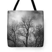 Waiting Bird Tote Bag by Dheeraj Mutha