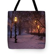 Walking The Path On Salem Ma Common Tote Bag
