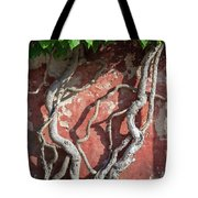 Walking Wall Tote Bag