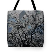 Wasteway Willow 04 Tote Bag
