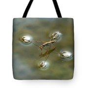 Water Bug Tote Bag