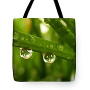 Water Drops On Wheat Leafs Tote Bag