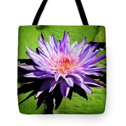 Water Lily 7 Tote Bag