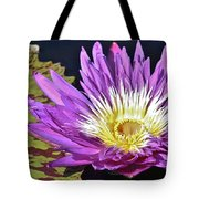 Water Lily On The Pond Tote Bag