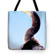 Water Turkey, Anhinga, Animal Portrait Tote Bag