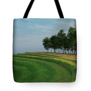 Waves Of Grass Tote Bag by Davor Zerjav