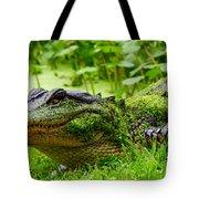 Wearin O' The Green Tote Bag