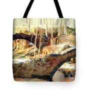 Weymouth Furnace 1802-1862 Tote Bag