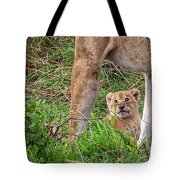 What Could Be Cuter Than A Baby Lion Cub? Tote Bag