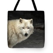 What's For Dinner? Tote Bag by Susan Rissi Tregoning