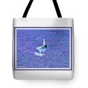 Where's Mine - The Blue Goose Tote Bag