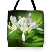 White Honeysuckle Flowers Tote Bag