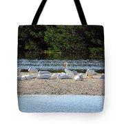 White Pelican Rest Tote Bag