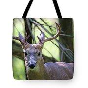 White Tailed Buck Portrait I Tote Bag