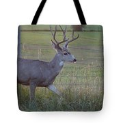 Whitetail Deer Tote Bag