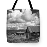 Whitney - Ghost Town Tote Bag by Matthew Irvin