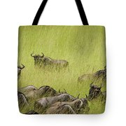 Wildebeest In Tall Grass Tote Bag by Mary Lee Dereske