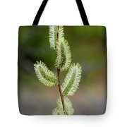 Willow In The Bloom Tote Bag