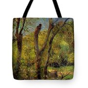 Willows 1885 Tote Bag
