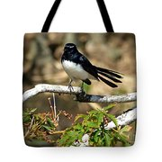 Willy Wagtail #1 Tote Bag