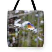 Winter Blue Tote Bag