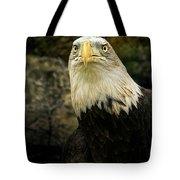 Winter Eagle Tote Bag