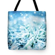 Winter Glow Tote Bag by Anne Leven