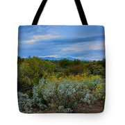 Winter In The Valley  H1933 Tote Bag by Mark Myhaver