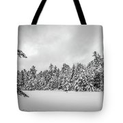 Winter Storm Anderson Pond Tote Bag