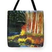 Winter Sunshine Landscape Tote Bag