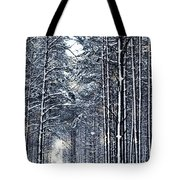 Winter Travel I Tote Bag by Anne Leven