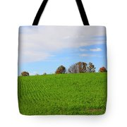 Winter Wheat In October In Southern Ontario Tote Bag