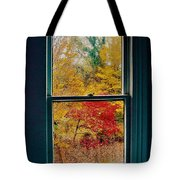 Winter Window Tote Bag by Randy Sylvia