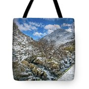 Winter Wonderland Snowdonia Tote Bag by Adrian Evans