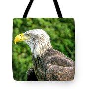 Wisconsin Bald Eagle Tote Bag