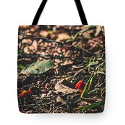 Witch's Hat Mushrooms Tote Bag