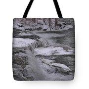 Wny Winter Wonderland Tote Bag