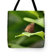 Wrapped In Green Tote Bag by T A Davies