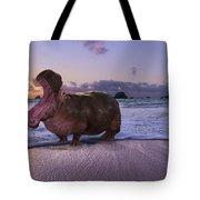 Yawning Coastal Hippo Hello Tote Bag