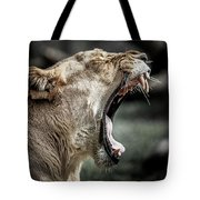 Yawning Mother Lion Tote Bag by Ron Pate